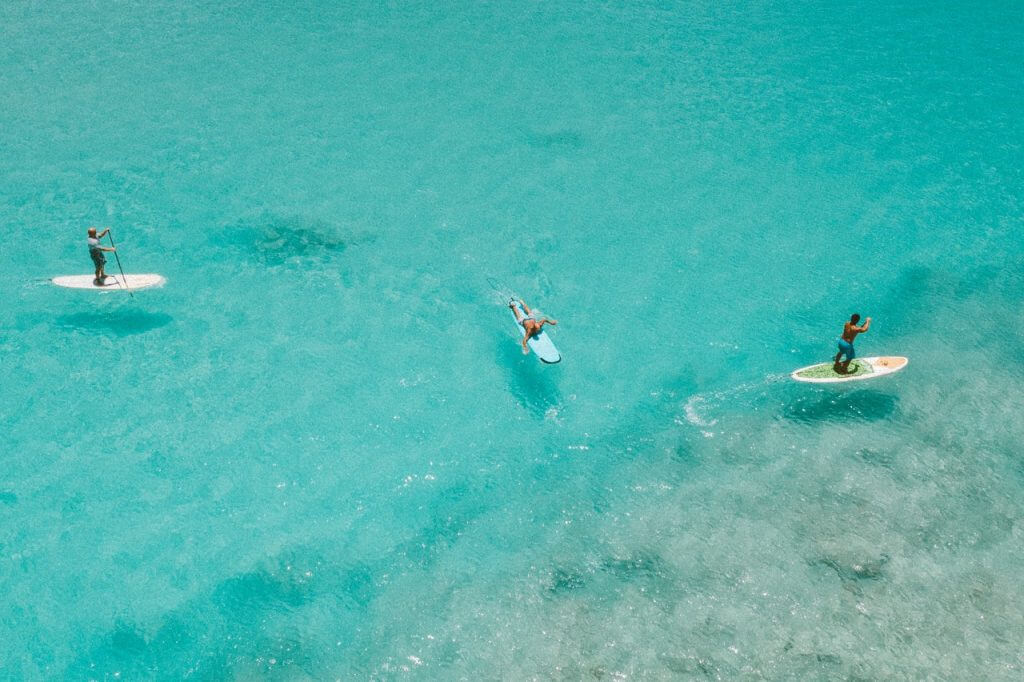 three people on stand up paddleboards in crystal clear water